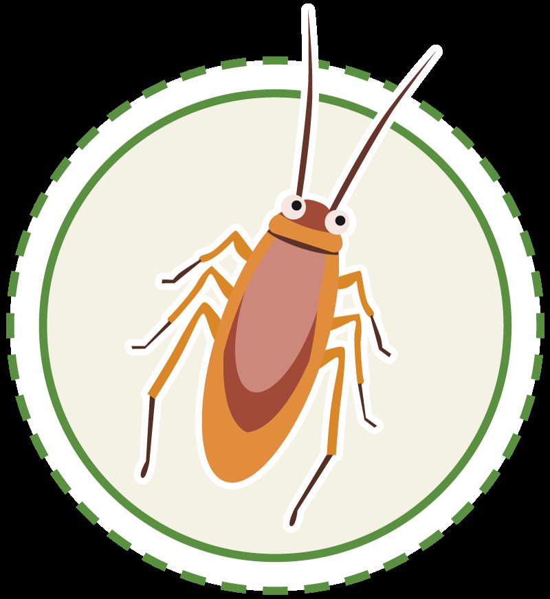 cockroach-circle-800